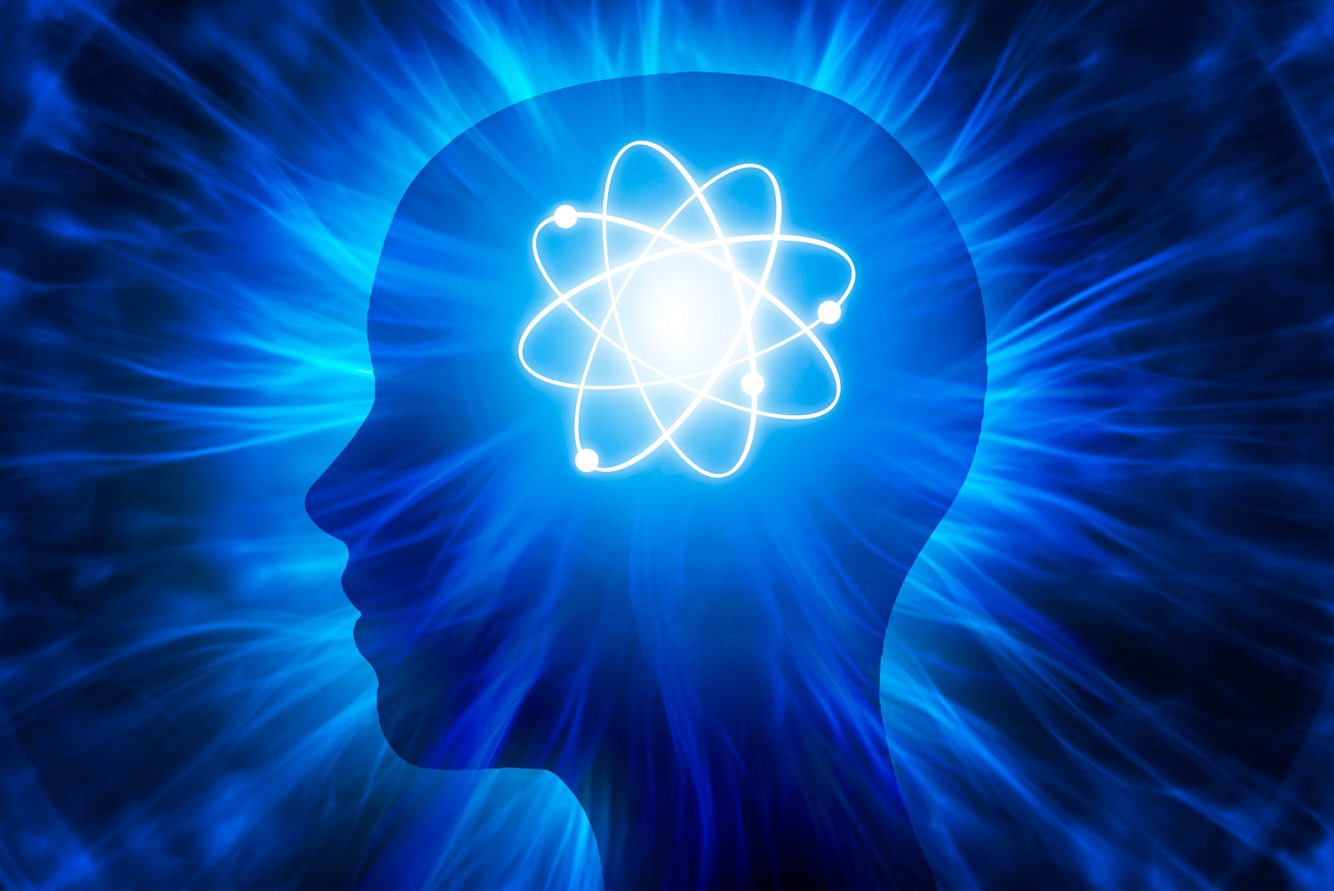 The Role of the Conscious Mind